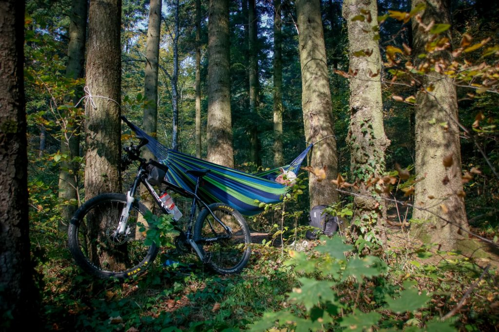 man in a hammock hanging between trees in the forest