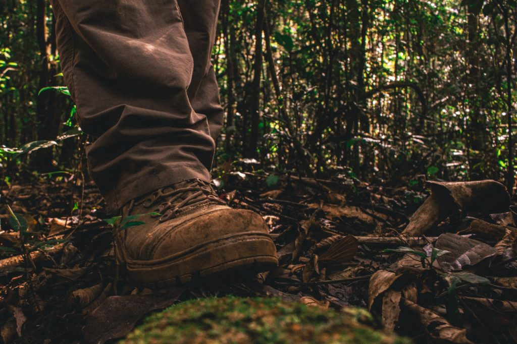 person in brown pants and shoes on forest