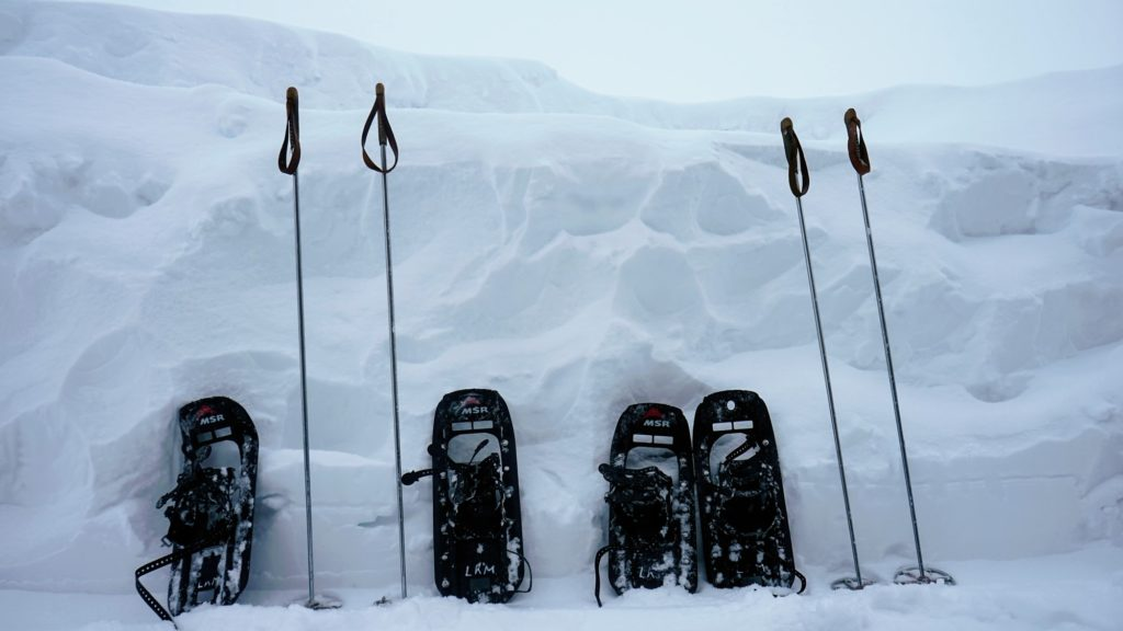 two pairs of snowshoes with poles leaning on snow